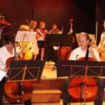 Audition pour l'ensemble des violoncelles CPMA 2011 - les adultes