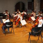 Concert Chateau 28-06-2009- ensemble des violoncelles